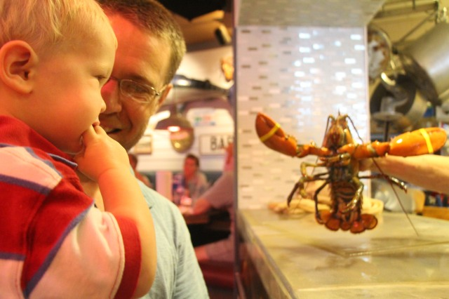 Petting a lobster at Geddy's in Bar Harbor, Maine