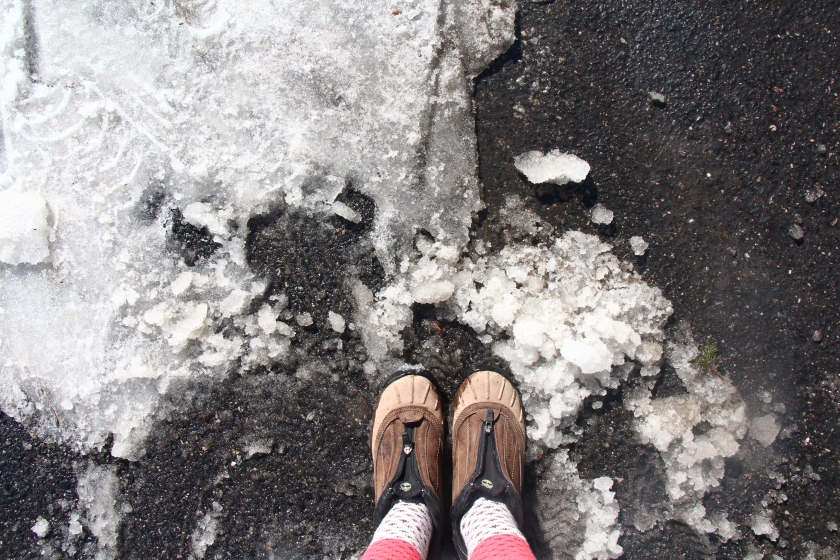 Friday Photo & Words | I melted a ton of snow in one afternoon (literally 2,000 punds)